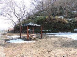 稚内公園の池‥変~身