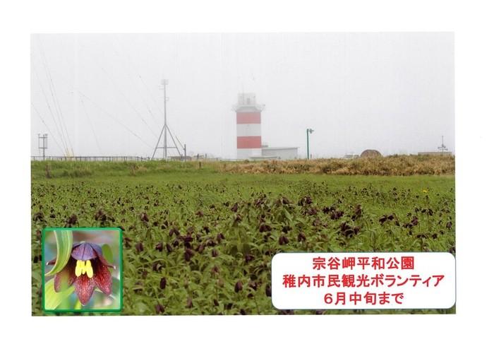 souyamisakiheiwakouen.jpg