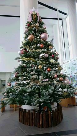キタカラにクリスマスツリー登場!