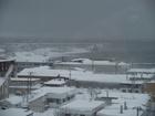 今日も吹雪!!
