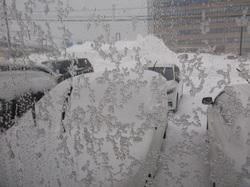 今度は・・こっち・・吹雪・・。
