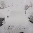 雪さん・・もういいですよ!!