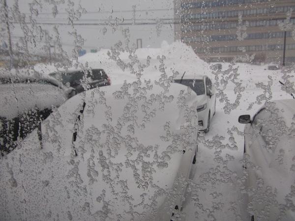111雪.jpg
