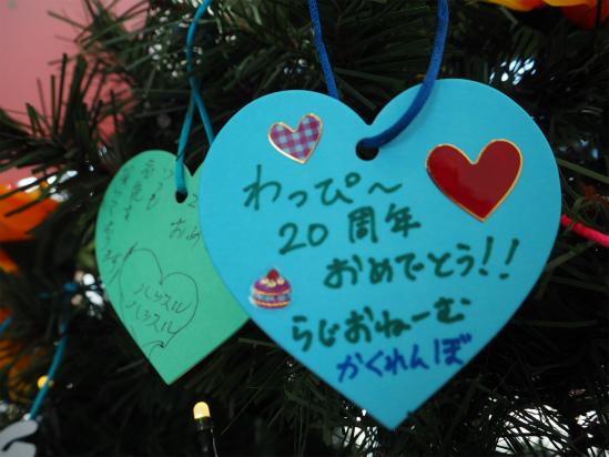 20ani (MS1).jpg
