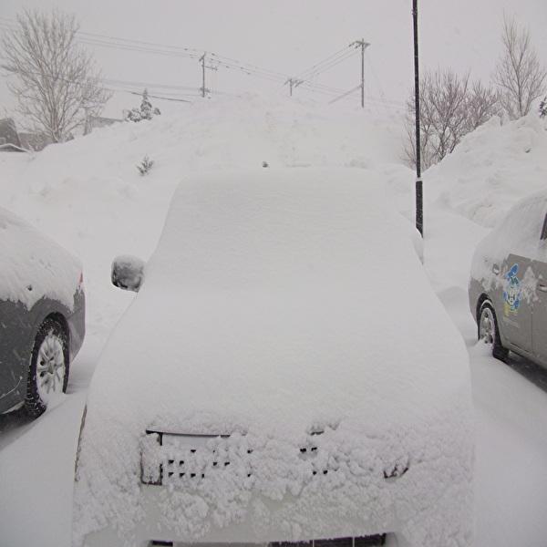 aa私の車.jpg